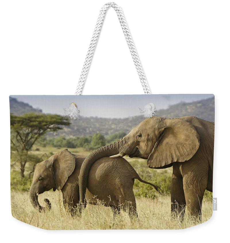 Africa Weekender Tote Bag featuring the photograph Maternal Love by Michele Burgess