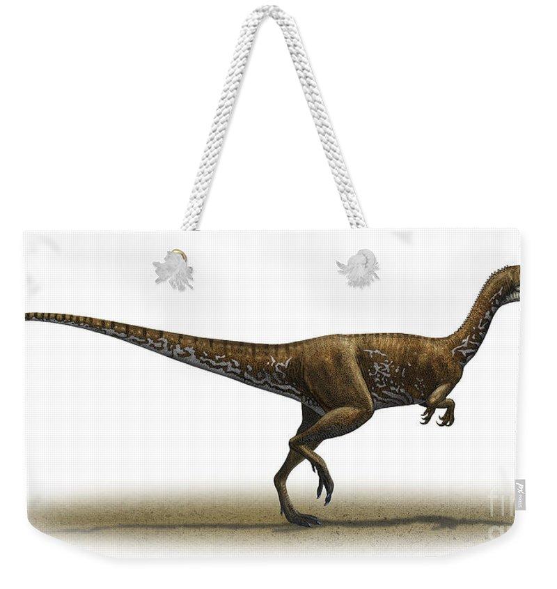 Horizontal Weekender Tote Bag featuring the digital art Megapnosaurus Kayentakatae by Sergey Krasovskiy