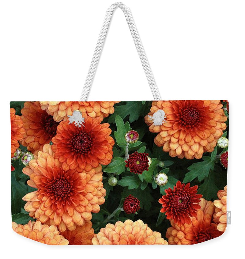 Marigolds Weekender Tote Bag featuring the photograph Merry Marigolds by Mike Nellums