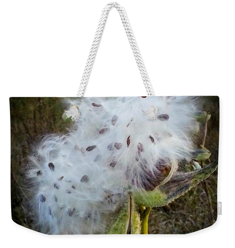 Milk Weed Weekender Tote Bag featuring the photograph Milk Weed by Cathy Smith