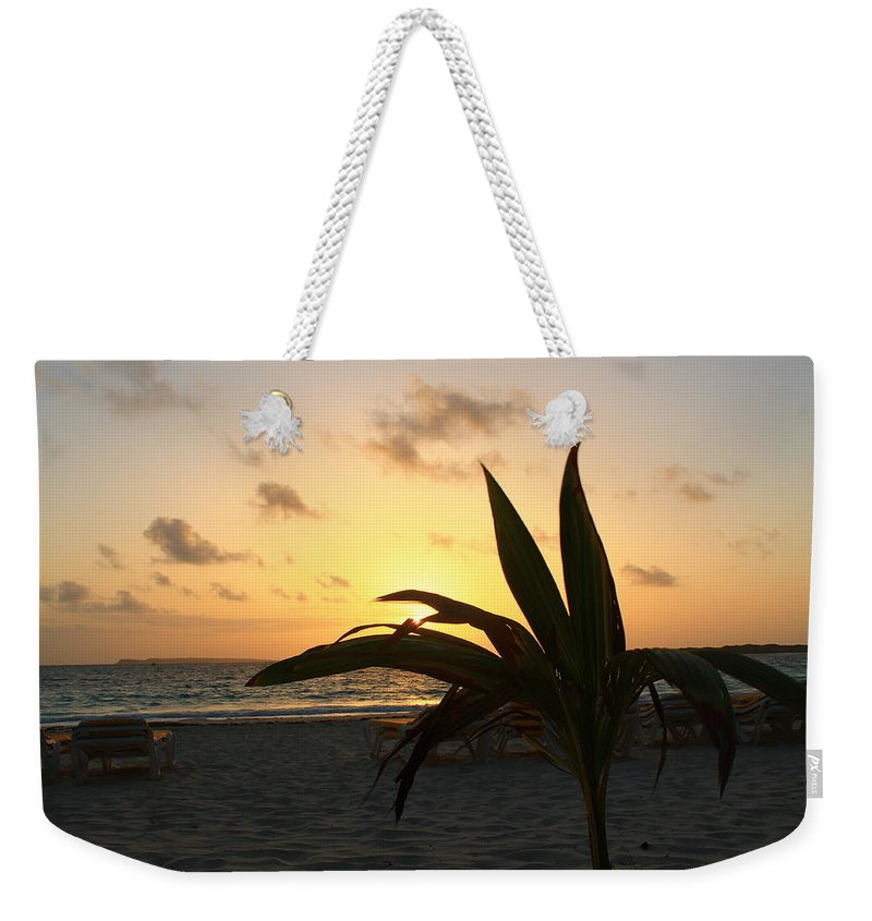 Sunrise Weekender Tote Bag featuring the photograph Mini Palm Hugging The Sun by Catie Canetti