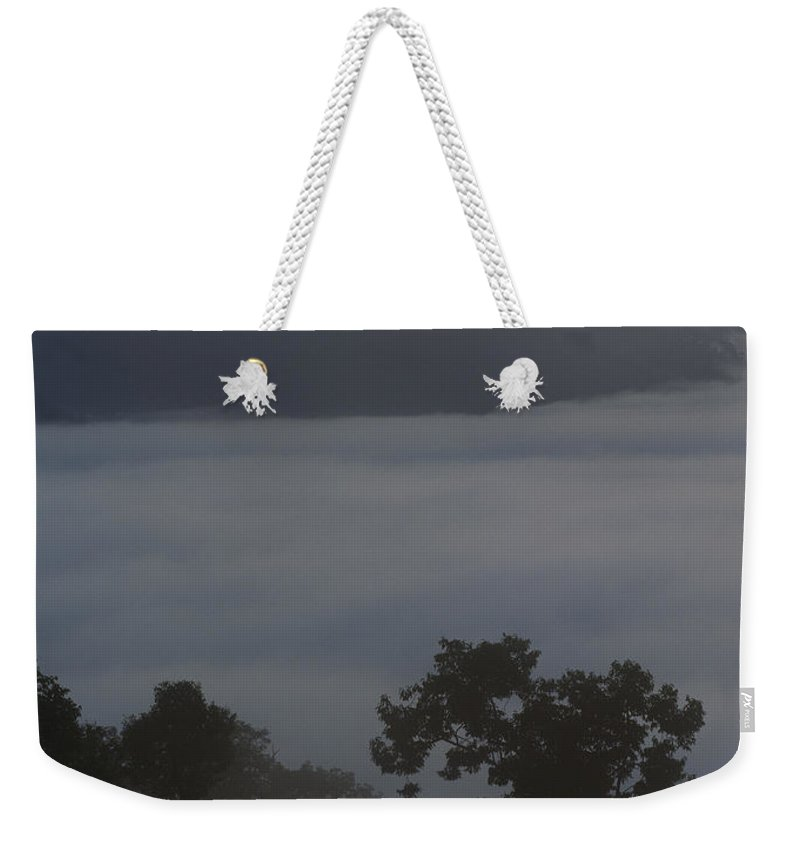 Asia Weekender Tote Bag featuring the photograph Mist-shrouded Rainforest by Mattias Klum