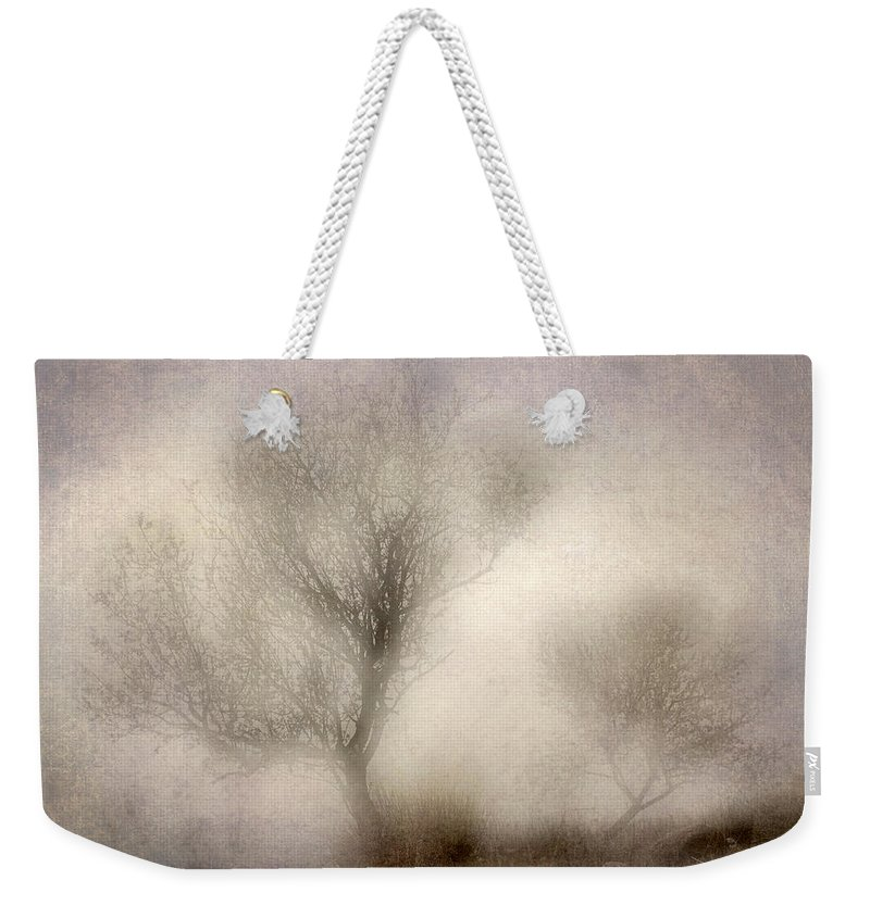 Textures Weekender Tote Bag featuring the photograph Misty Dreams by Guido Montanes Castillo