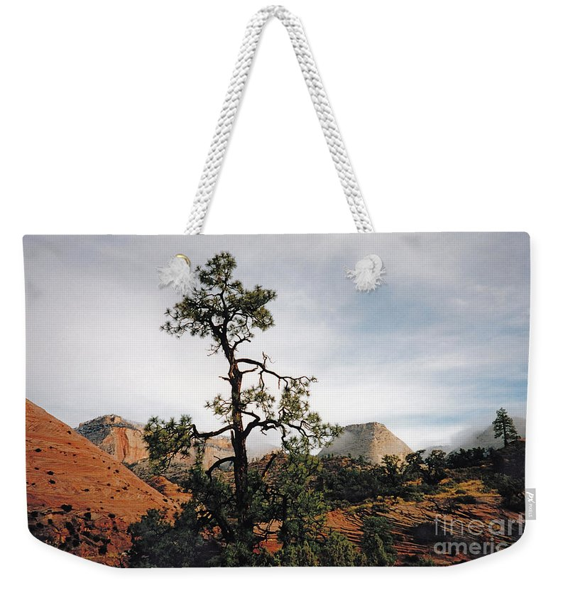 Zion Canyon Weekender Tote Bag featuring the photograph Misty Morning In Zion Canyon by Byron Varvarigos