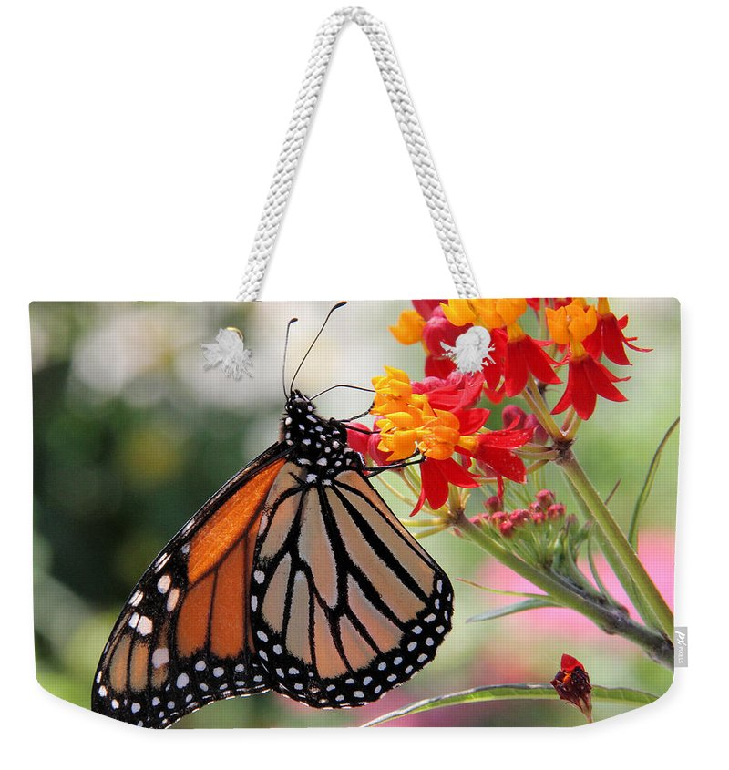 Monarch Weekender Tote Bag featuring the photograph Monarch On Butterfly Weed by Doris Potter
