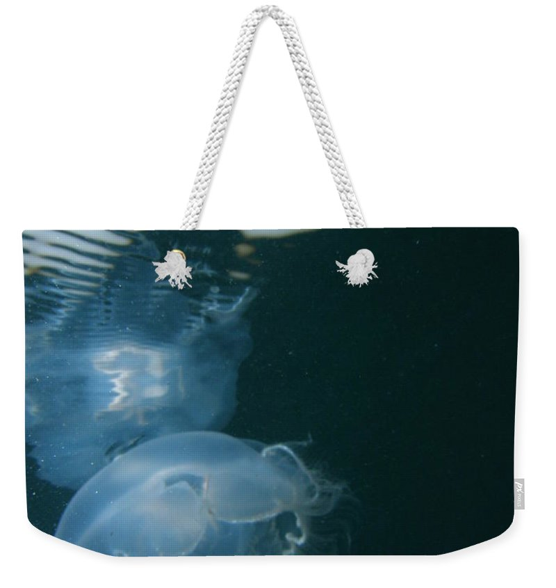 Ocean Water Sunlight Sea Blue Pink Jellyfish Wildlife Nature Weekender Tote Bag featuring the photograph Moon Jelly Ripples by Kimberly Mohlenhoff