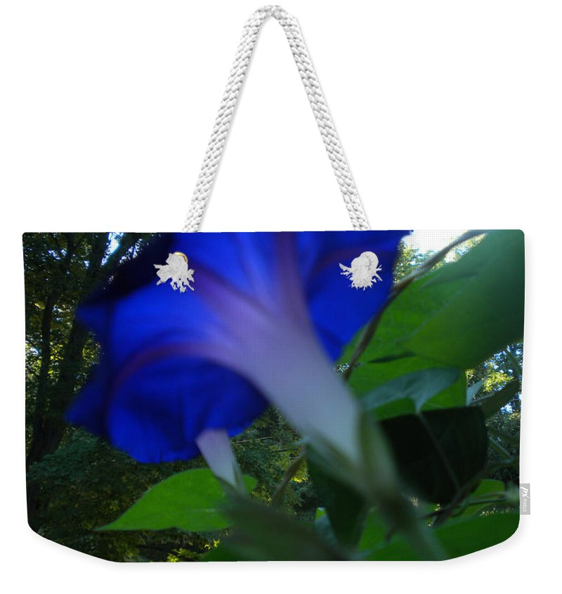 Morning Glory Weekender Tote Bag featuring the photograph Morning Glory 02 by Thomas Woolworth