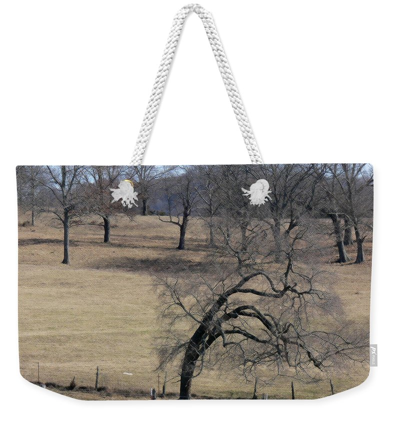 Tn Weekender Tote Bag featuring the photograph Morning Stretch by Ericamaxine Price