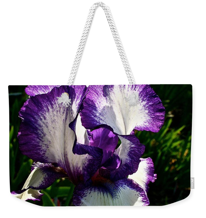Plant Weekender Tote Bag featuring the photograph Morning Sun by Susan Herber