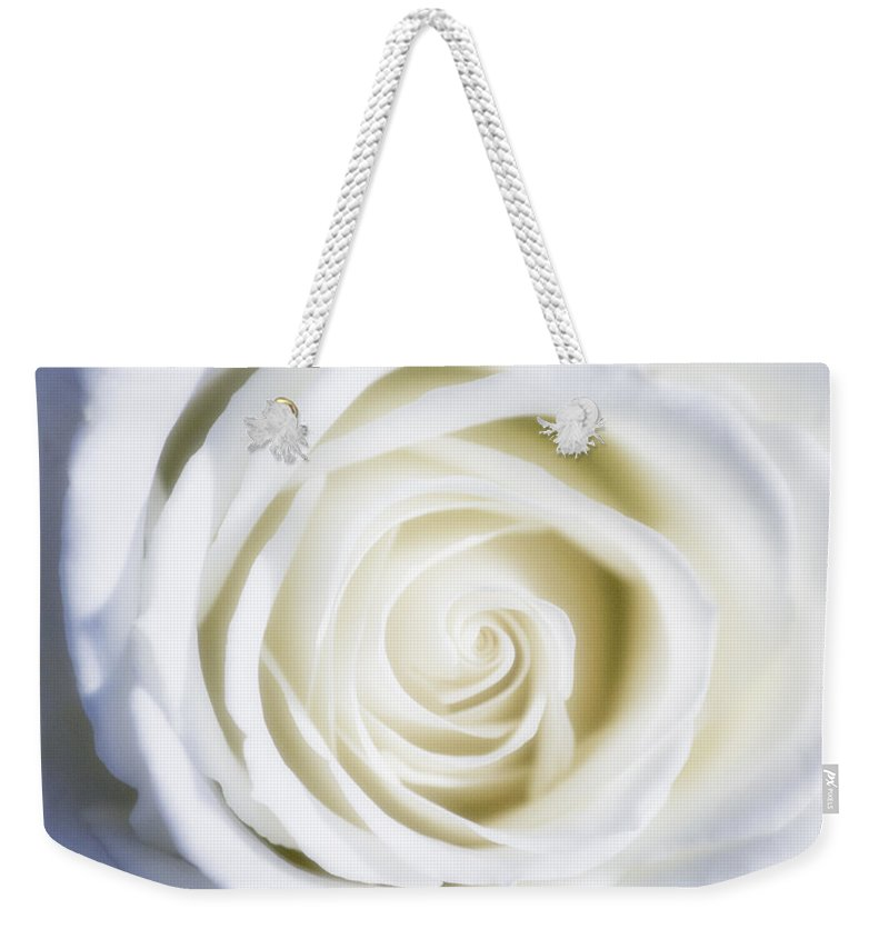 Macro Weekender Tote Bag featuring the photograph Mother's White Rose by Linda Dunn
