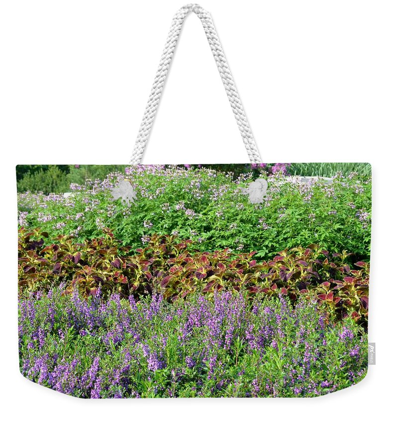 Mounds Weekender Tote Bag featuring the photograph Mounds Of Color by Maria Urso