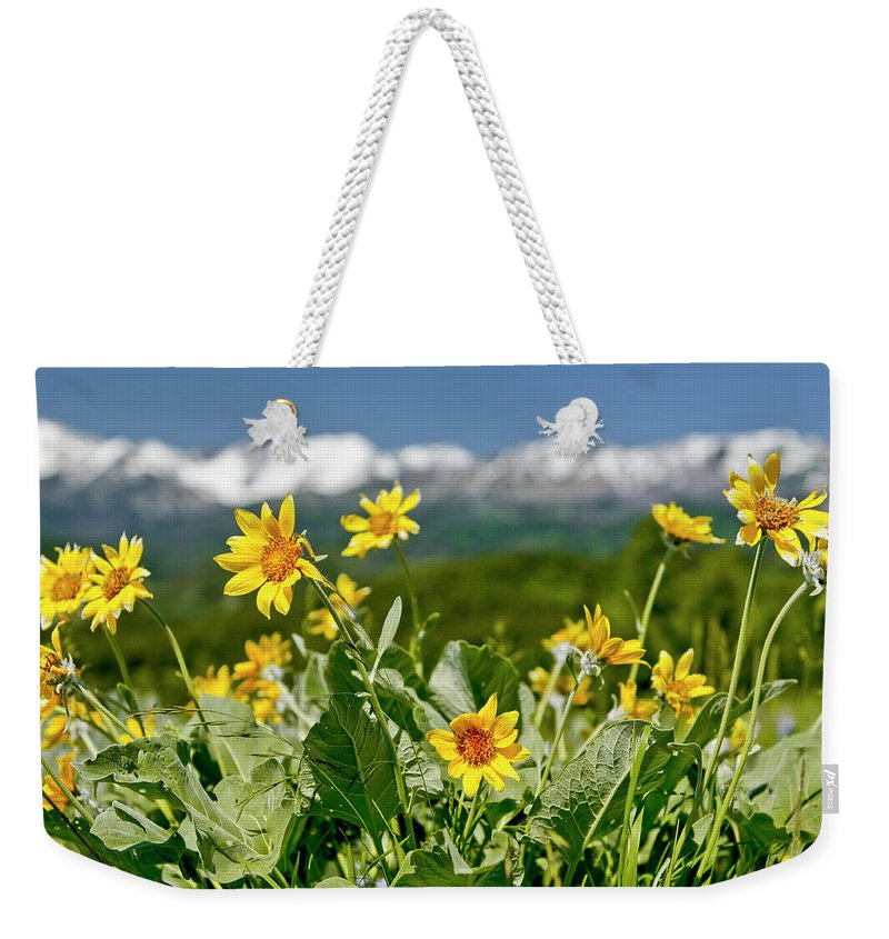 Americas Weekender Tote Bag featuring the photograph Mountain Flower View by Roderick Bley