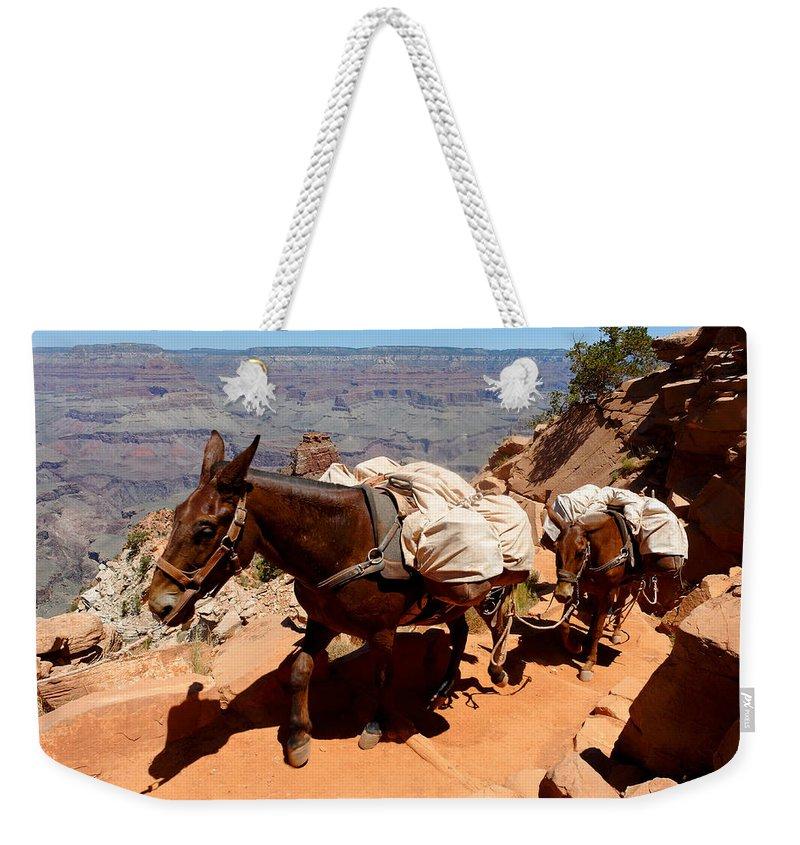 Mule Weekender Tote Bag featuring the photograph Mule Train by Julie Niemela