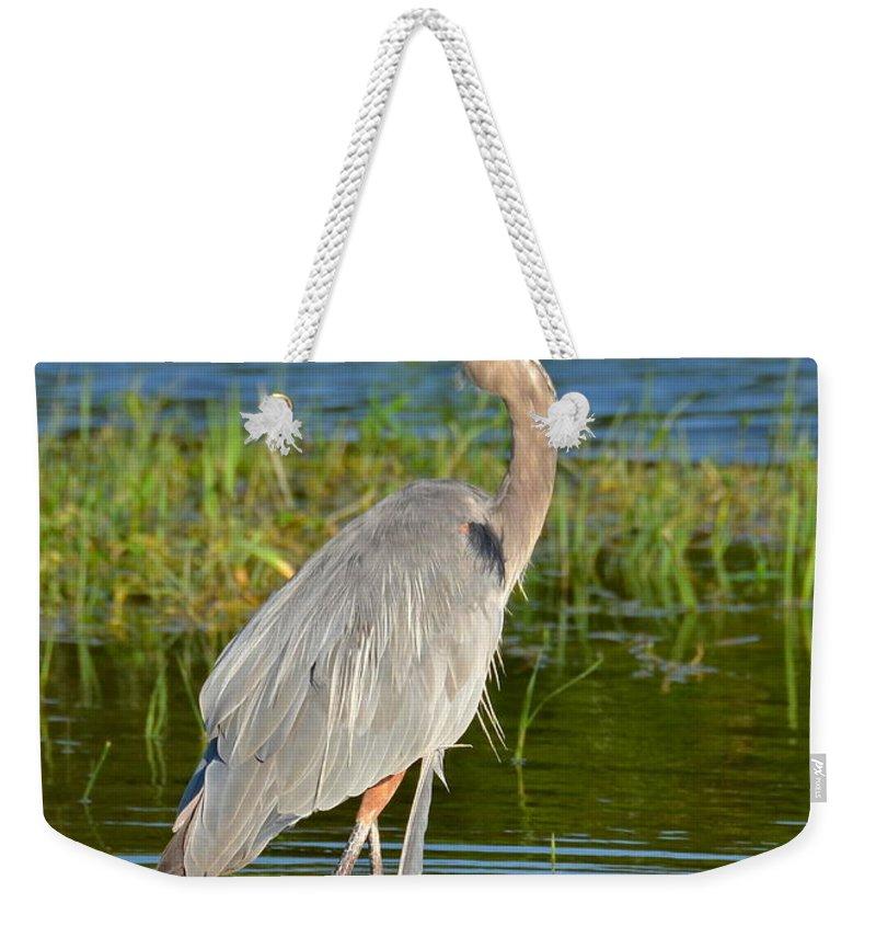 Heron Weekender Tote Bag featuring the photograph My Blue Heron by Carol Bradley