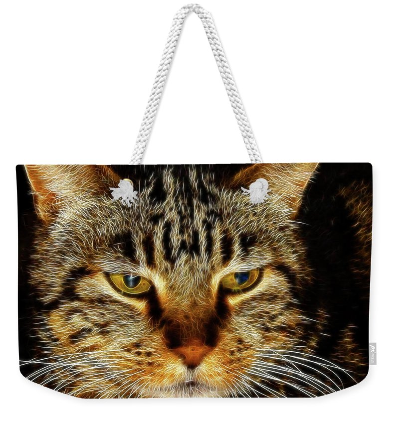 Meow Meow Weekender Tote Bag featuring the digital art My Bored Cat by Mariola Bitner
