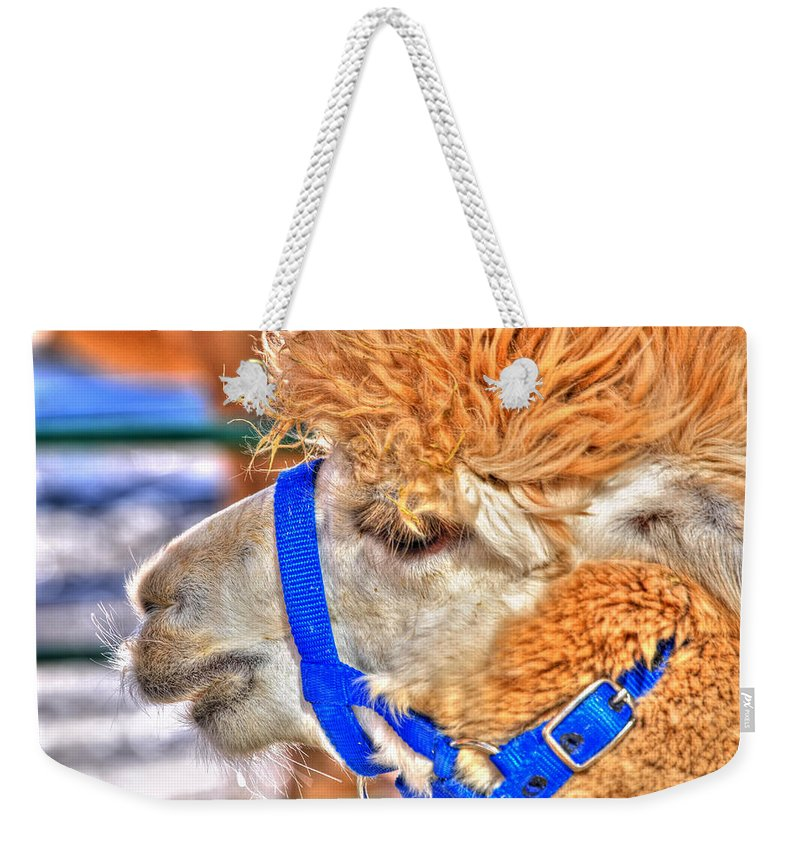 Weekender Tote Bag featuring the photograph My Good Side by Michael Frank Jr