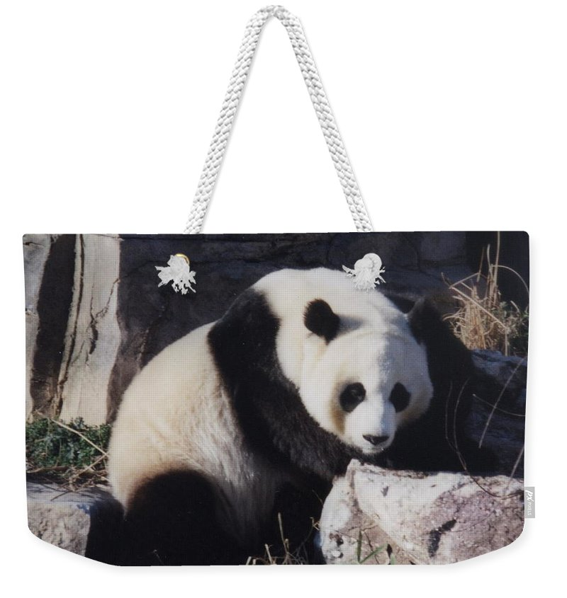 Panda Weekender Tote Bag featuring the photograph National Zoo Panda by Richard Bryce and Family