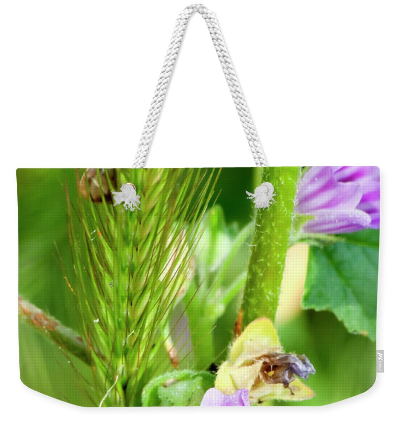 Flower Weekender Tote Bag featuring the photograph Natural Bouquet by Pedro Cardona Llambias