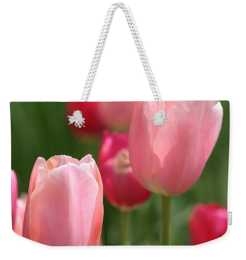 Flowers Weekender Tote Bag featuring the photograph Naturally Feminine by Living Color Photography Lorraine Lynch