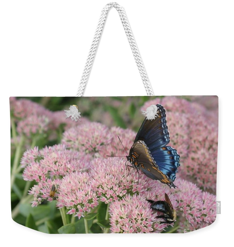 Butterfly Weekender Tote Bag featuring the photograph Nature Sharing by Living Color Photography Lorraine Lynch