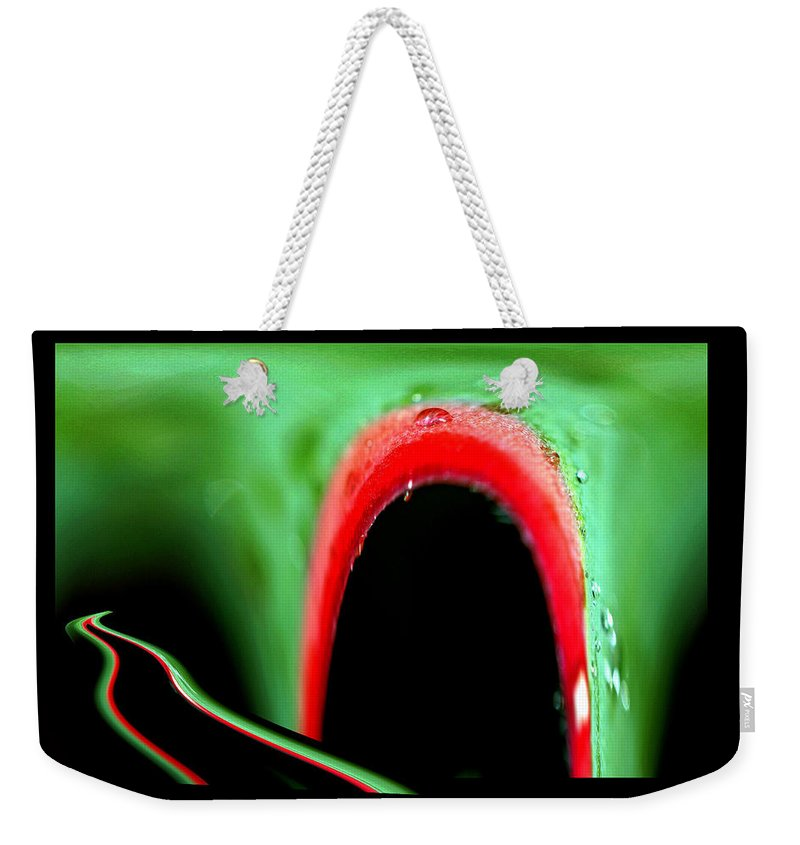 Nature Weekender Tote Bag featuring the photograph Nature Works by Marie Jamieson