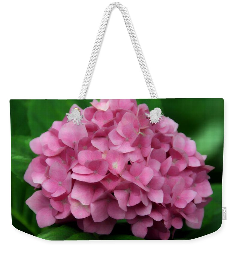 Flower Weekender Tote Bag featuring the photograph Nature's Gifts by Georgiana Romanovna