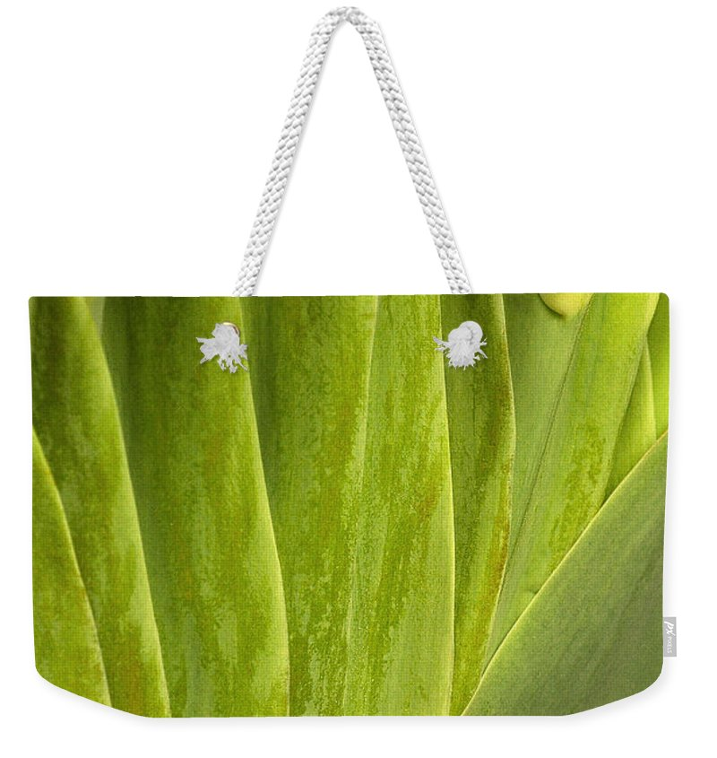 Nature Weekender Tote Bag featuring the photograph Nature's Still Life 2 by Mike Nellums