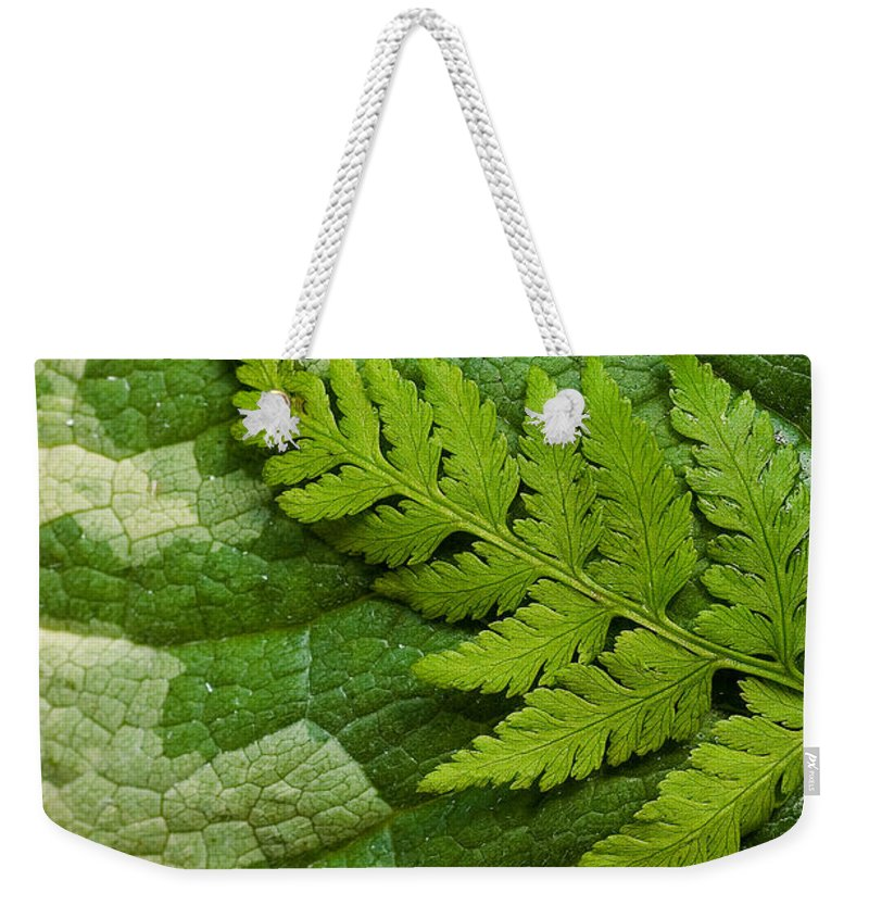 Green Weekender Tote Bag featuring the photograph Nature's Still Life 3 by Mike Nellums