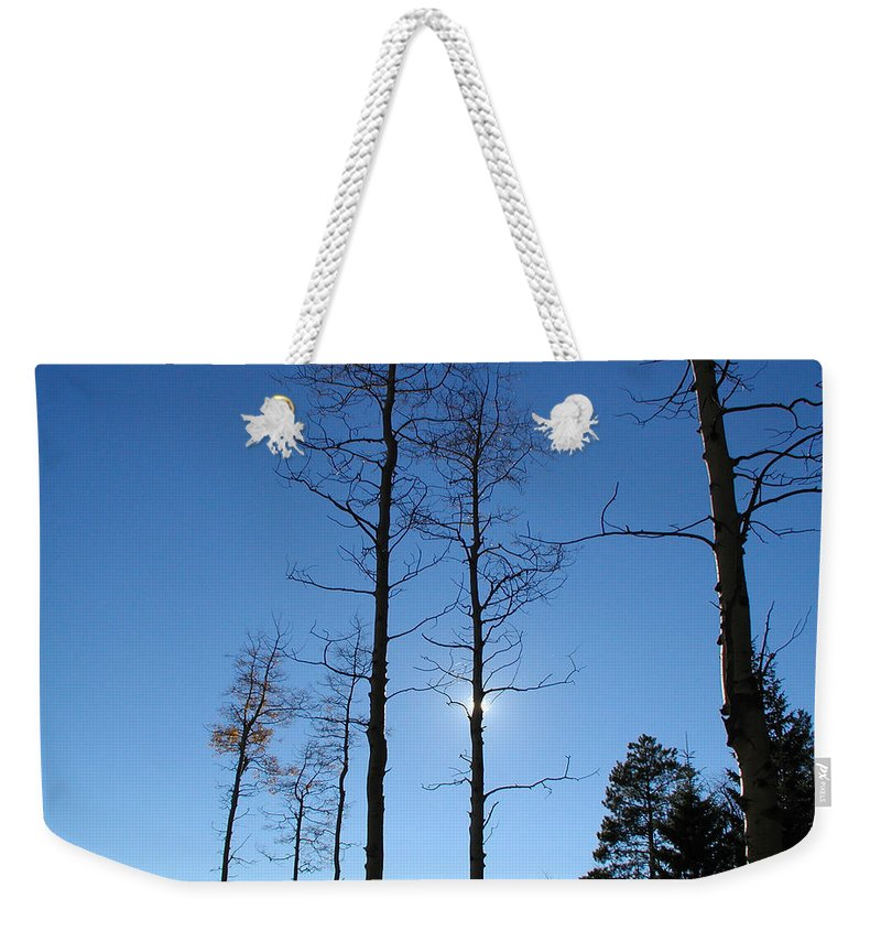 Landscape Weekender Tote Bag featuring the photograph New Mexico Series - Bare Tree Sky by Kathleen Grace