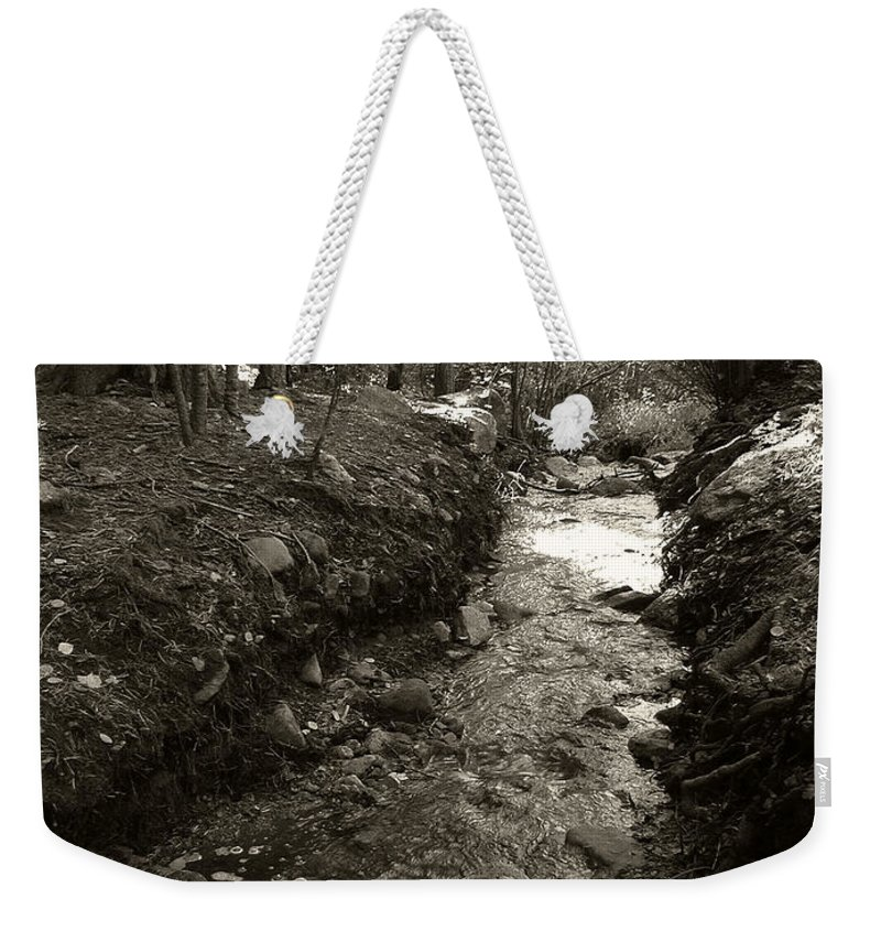 Mountain Weekender Tote Bag featuring the photograph New Mexico Series - Late Winter Streambed by Kathleen Grace