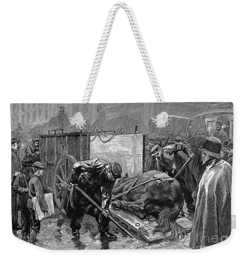 1888 Weekender Tote Bag featuring the photograph New York: Aspca, 1888 by Granger