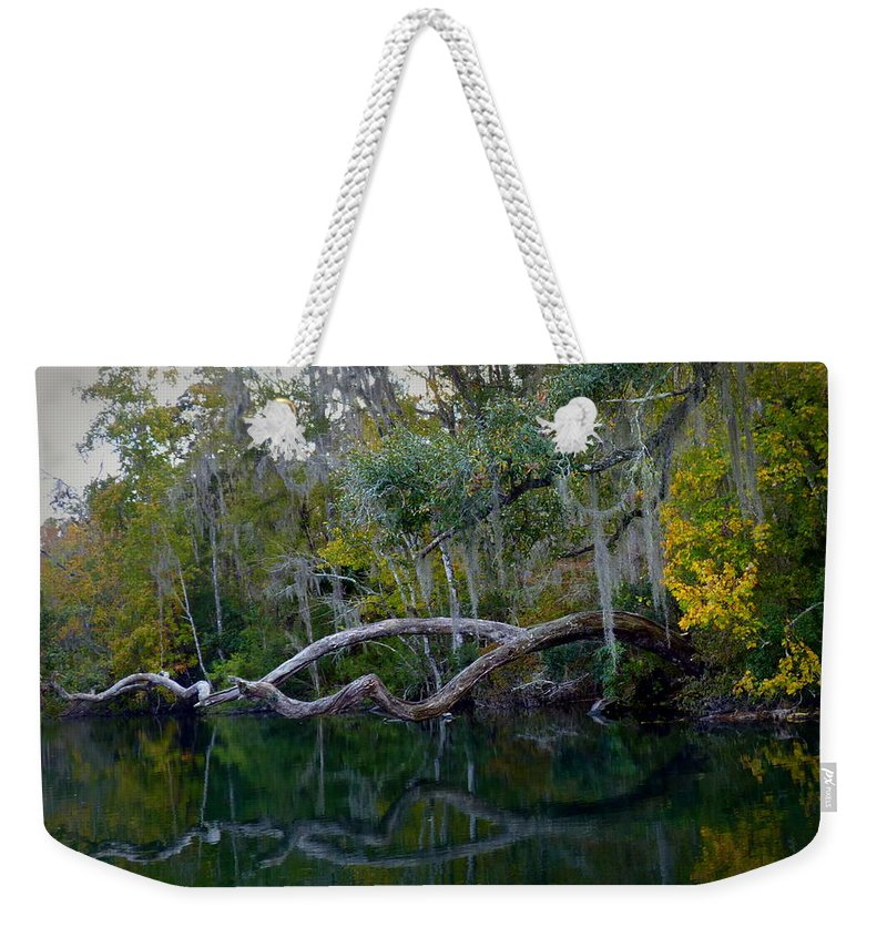 Florida Weekender Tote Bag featuring the photograph North Florida River Reflections by Carla Parris