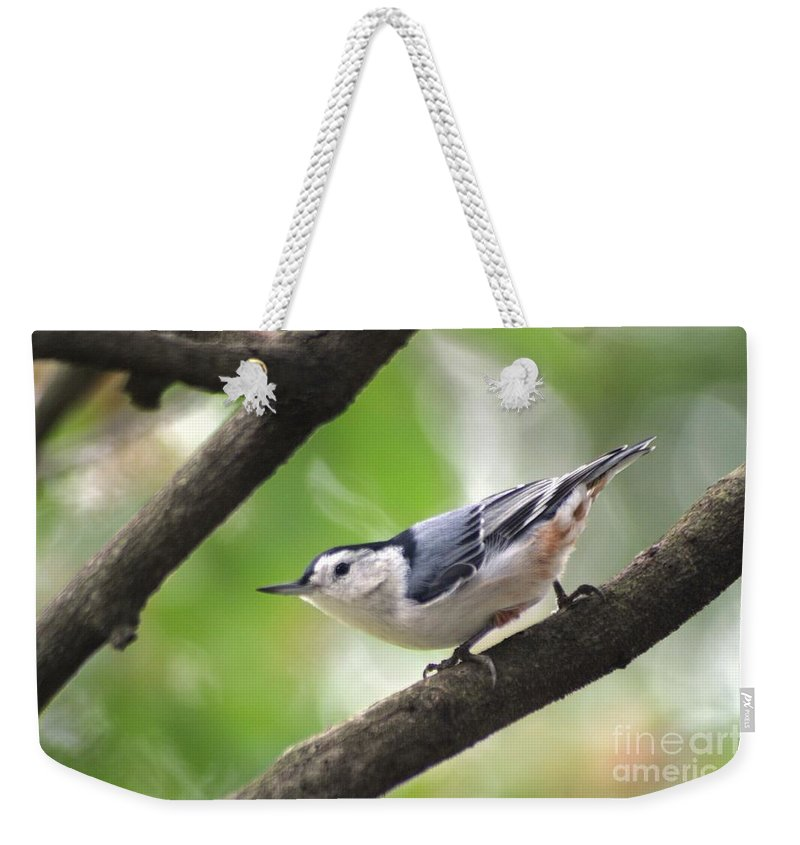 Birds Weekender Tote Bag featuring the photograph Nuthatch by Living Color Photography Lorraine Lynch