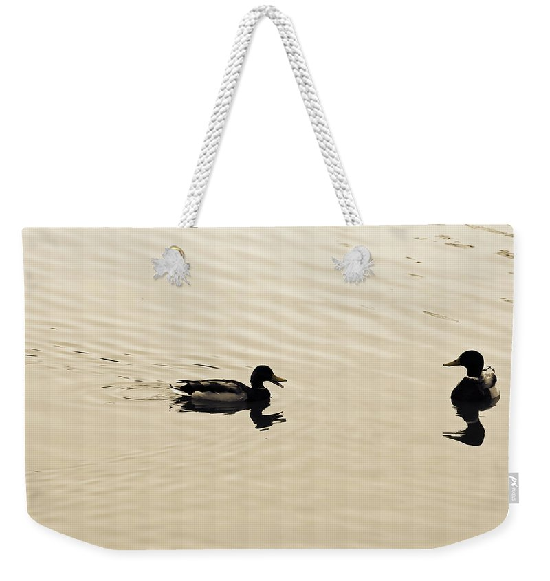 Water Weekender Tote Bag featuring the photograph Oh-oh Here Comes Trouble by Douglas Barnard