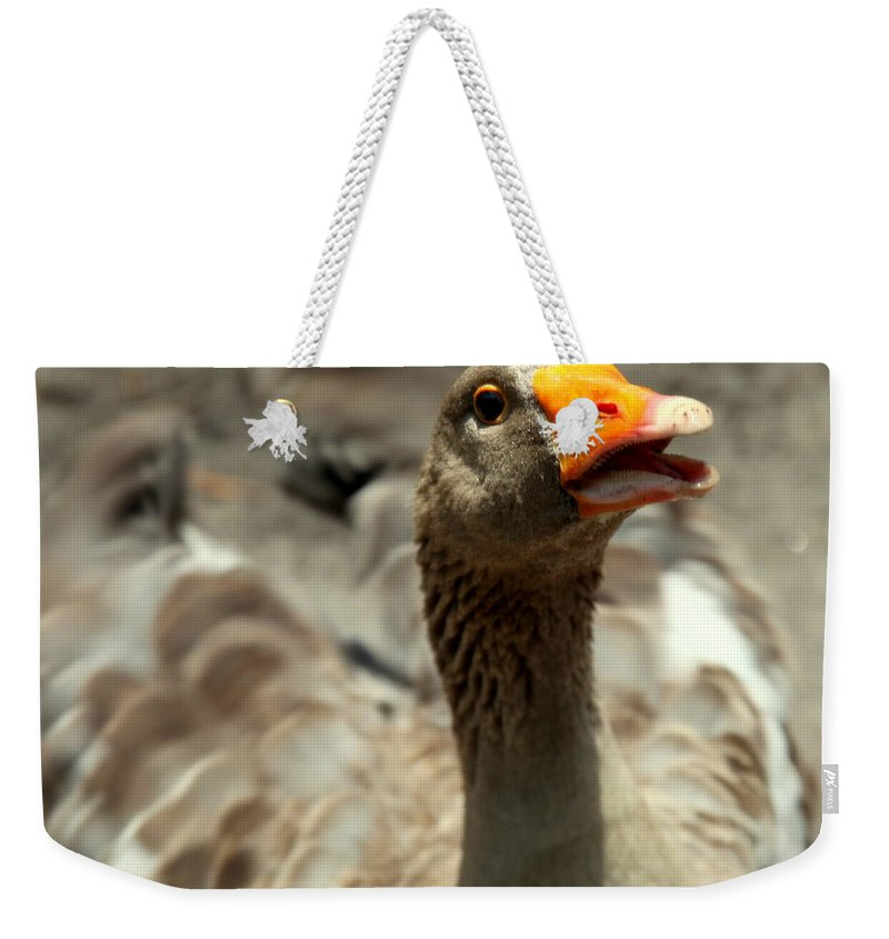 Goose Weekender Tote Bag featuring the photograph Old Mother Goose by Karen Wiles