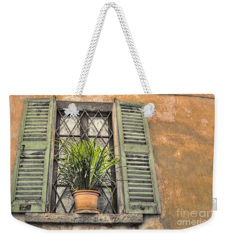 Window Weekender Tote Bag featuring the photograph Old Window And A Green Plant by Mats Silvan