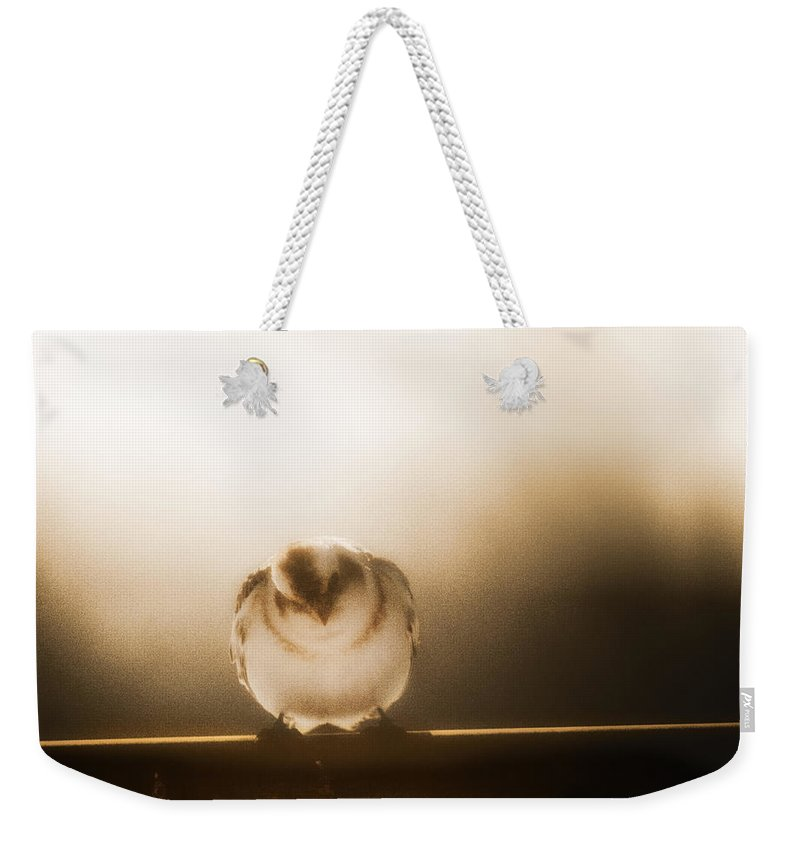 Birds Weekender Tote Bag featuring the photograph On Winters Edge by Susan Capuano