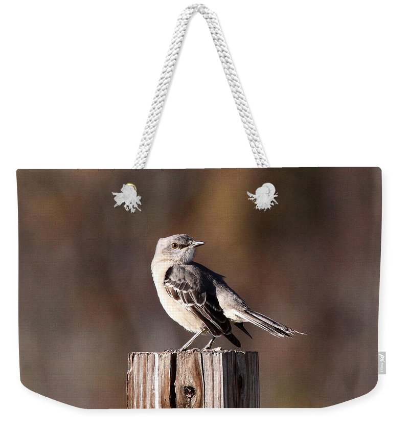 Photos Weekender Tote Bag featuring the photograph One On A 4x4 by Travis Truelove