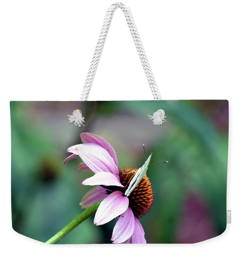 One Weekender Tote Bag featuring the photograph One On One by Maria Urso