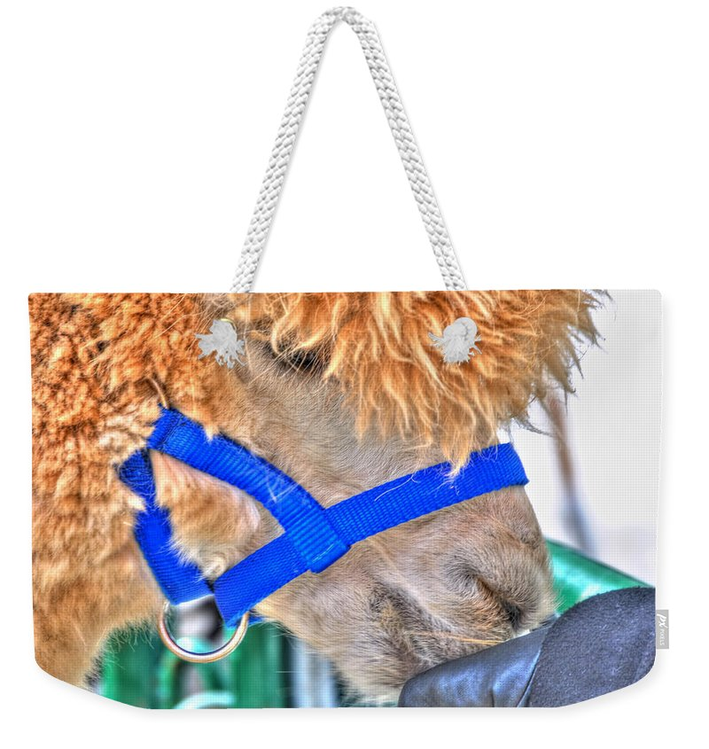 Weekender Tote Bag featuring the photograph One With Nature by Michael Frank Jr