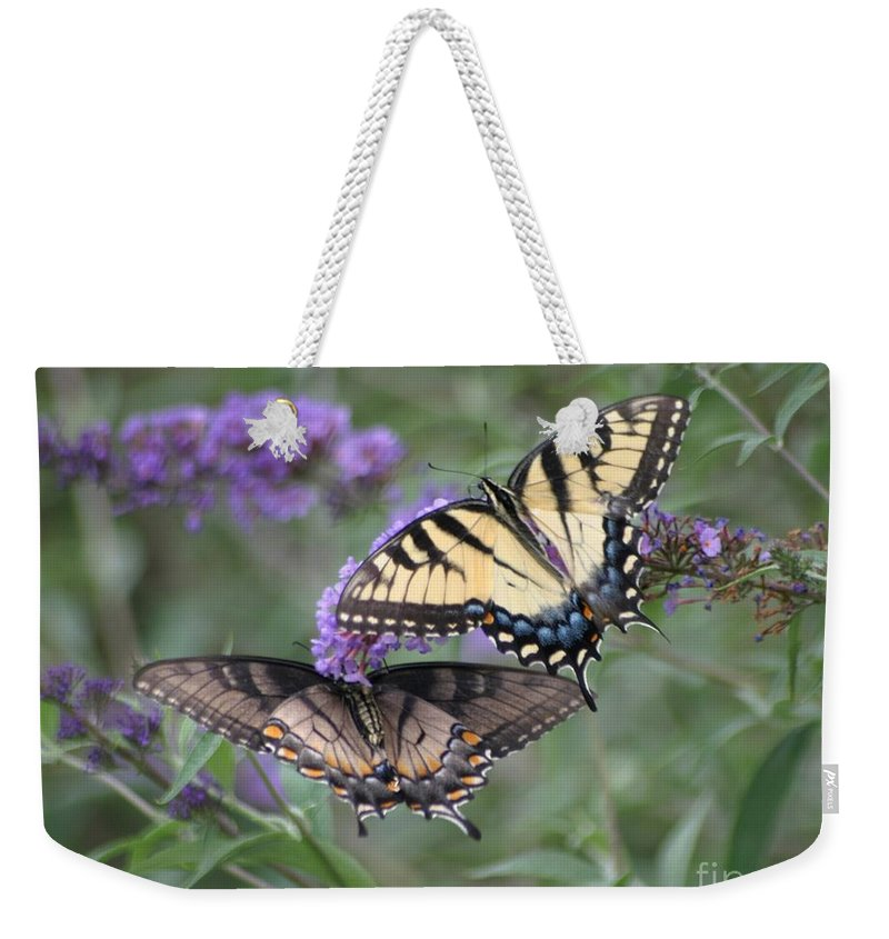 Butterflies Weekender Tote Bag featuring the photograph Opposites Attract by Living Color Photography Lorraine Lynch