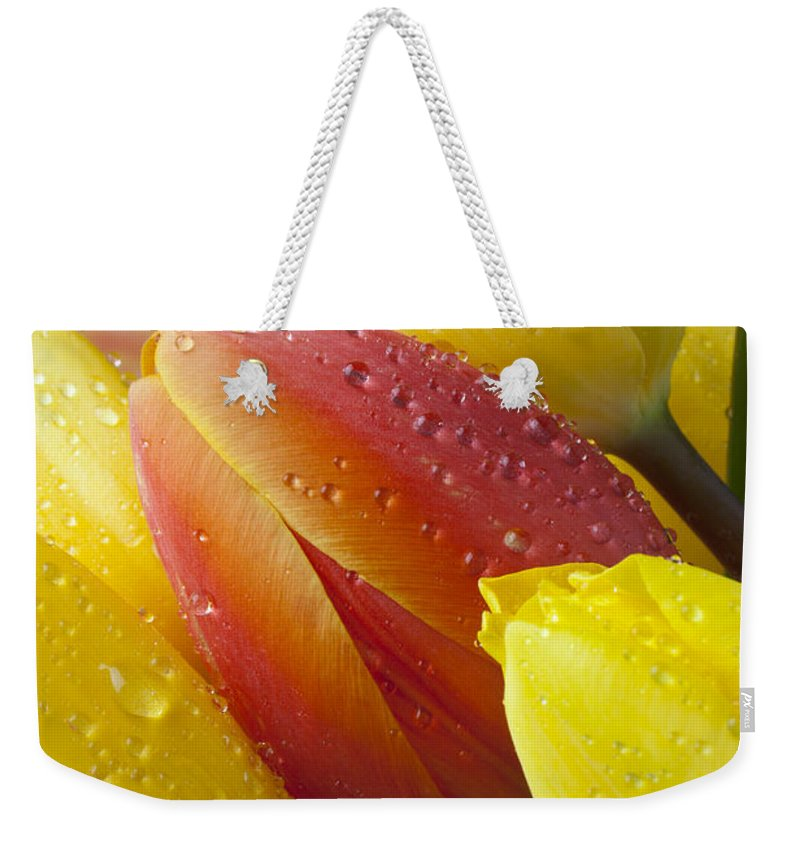 Orange Yellow Tulip Weekender Tote Bag featuring the photograph Orange And Yellow Tulips by Garry Gay