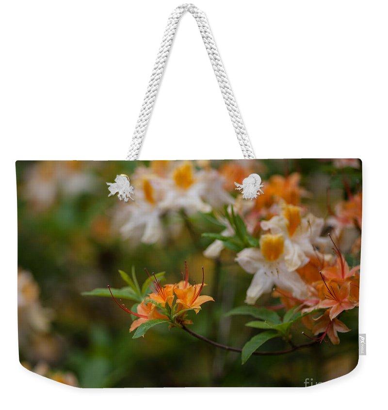 Rhodies Weekender Tote Bag featuring the photograph Orange Brilliance by Mike Reid