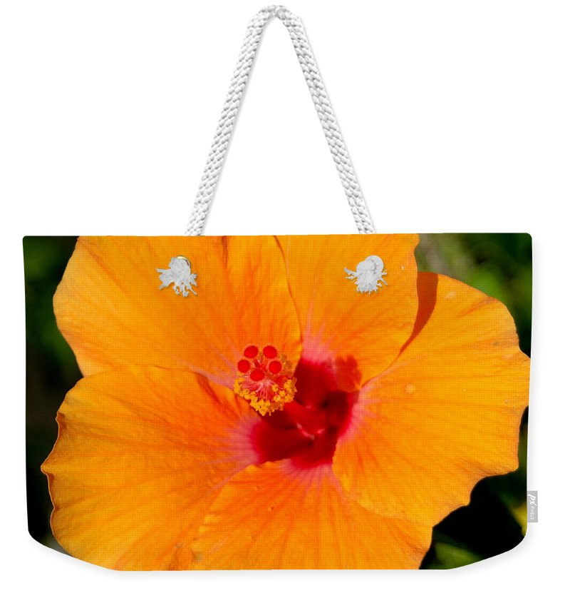 Flora Weekender Tote Bag featuring the photograph Orange Hibiscus by Mark Gilman