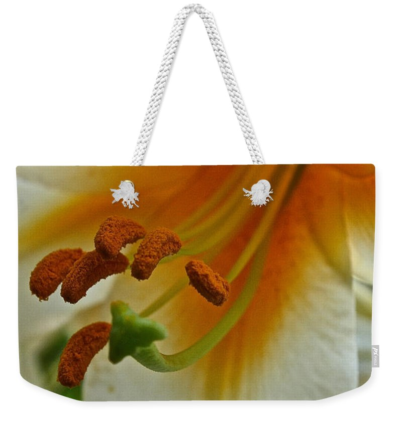 Outdoors Weekender Tote Bag featuring the photograph Orange Interior by Susan Herber