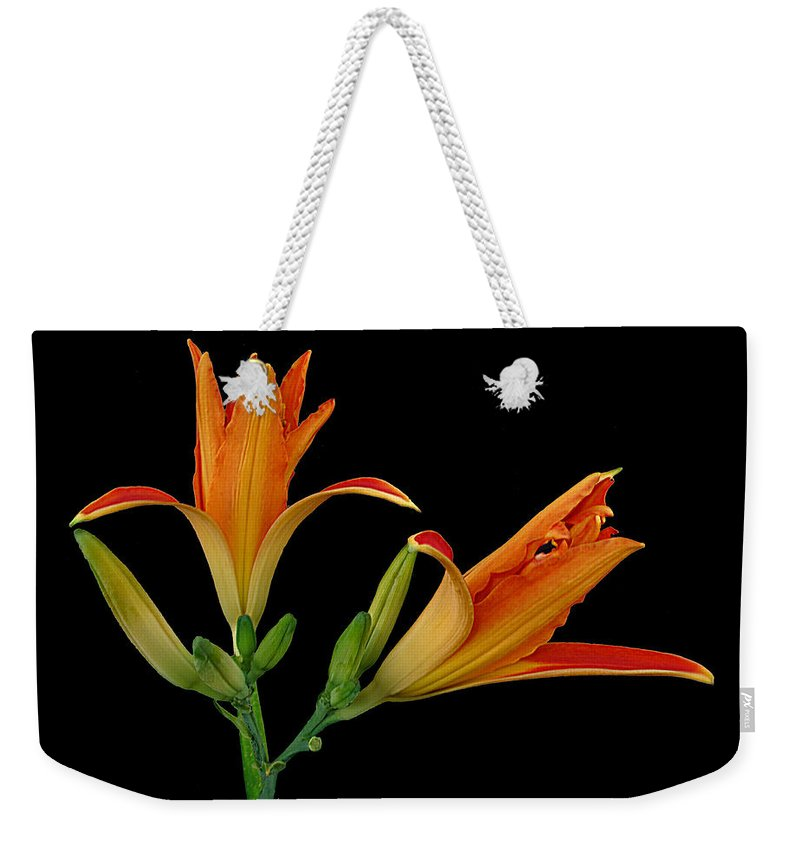 Lily Weekender Tote Bag featuring the photograph Orange Lily On Black by Joyce Dickens