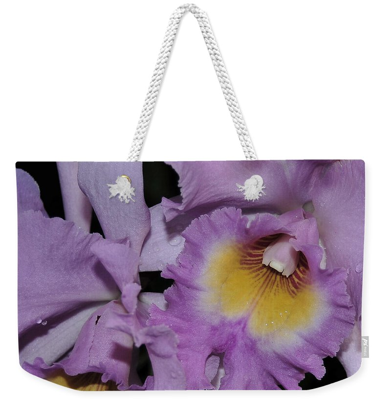 Orchid Weekender Tote Bag featuring the photograph Orchid 234 by Terri Winkler