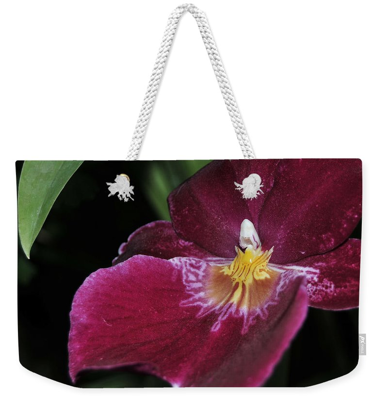 Orchid Weekender Tote Bag featuring the photograph Orchid 252 by Terri Winkler