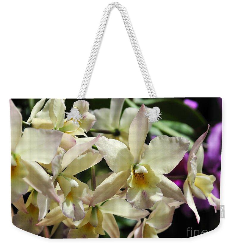 Flower Weekender Tote Bag featuring the photograph Orchid Iwanagara 9854 by Terri Winkler