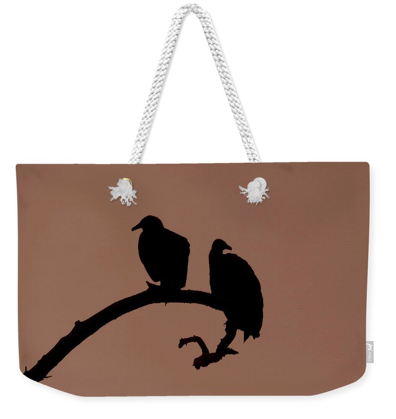 Nature Weekender Tote Bag featuring the photograph Out On A Limb by Peg Urban